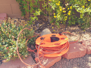 Outdoor Extension Cord in Yard